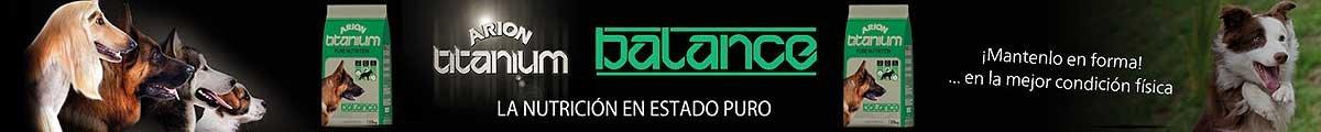 BannerBalancePortada
