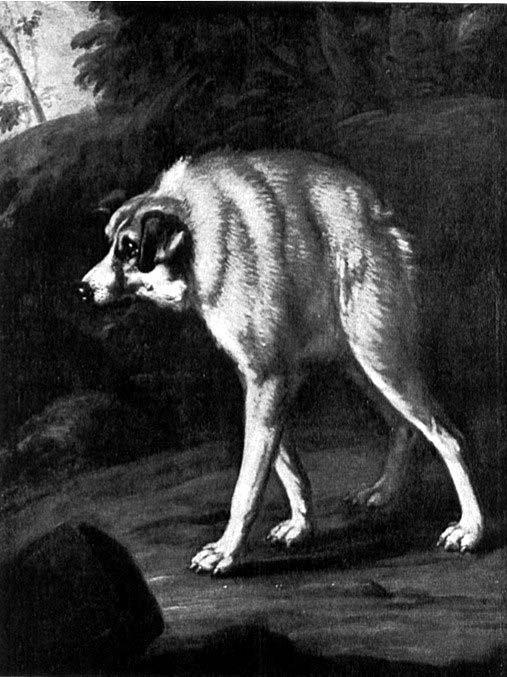 """""""Monstruo de perro y zorro"""", de David K. Ehrenstrahl"""